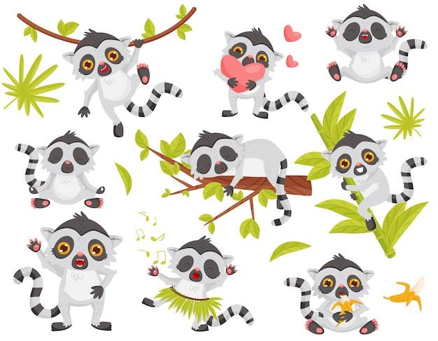 Set di lemure carino in diverse azioni. animale esotico con coda lunga e grandi occhi lucenti