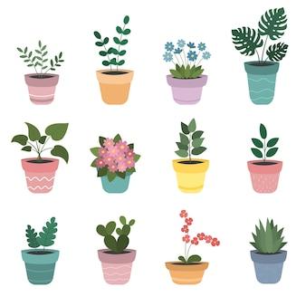 Un set di fiori decorativi per interni in vasi colorati
