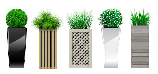 Set di decorativi in vasi con piante