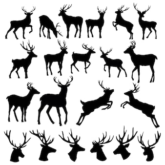 Set di una sagoma di testa di cervo