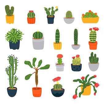 Set di diversi cactus isolati su uno sfondo bianco piante d'appartamentoillustrazione vettoriale in stile piatto
