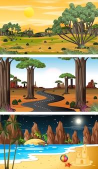 Set di diverse scene orizzontali della foresta in tempi diversi