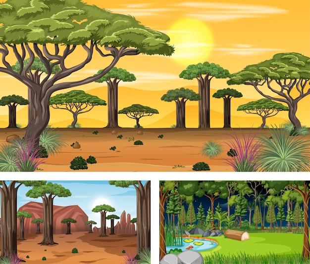 Set di diverse scene orizzontali della foresta