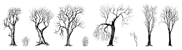 Set di diverse sagome di alberi spogli e cespugli. autunno, giardino d'inverno. illustrazione disegnata a mano di vettore nello stile dell'incisione. elementi grafici di contorno isolati su sfondo bianco.