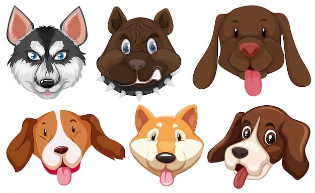 Set di testa di razze di cani