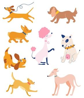 Set di cani di razze diverse. animali divertenti. morbidi amici animali domestici. diversi tipi di cani dei cartoni animati. corgi, barboncino, bastardi, bull terrier, levriero. illustrazione vettoriale isolato
