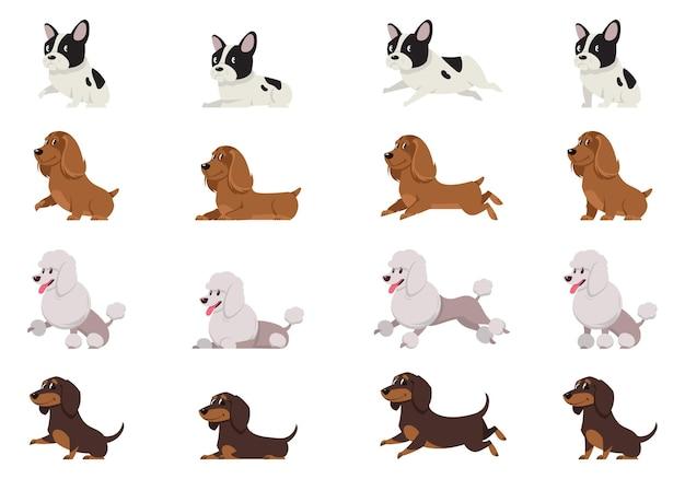 Set di cani in diverse pose
