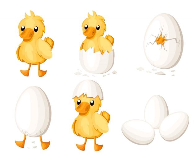 Set di anatroccolo portello dall'uovo. simpatico anatroccolo con stile. illustrazione su sfondo bianco. pagina del sito web e app per dispositivi mobili