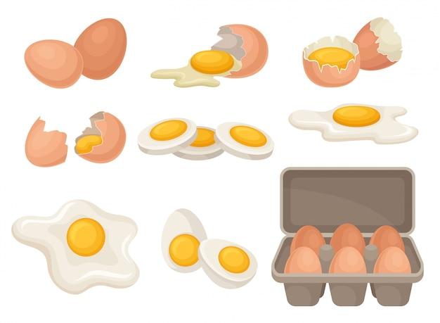 Set di uova in diverse forme crude, bollite e fritte. prodotto agricolo biologico ingrediente da cucina per la colazione