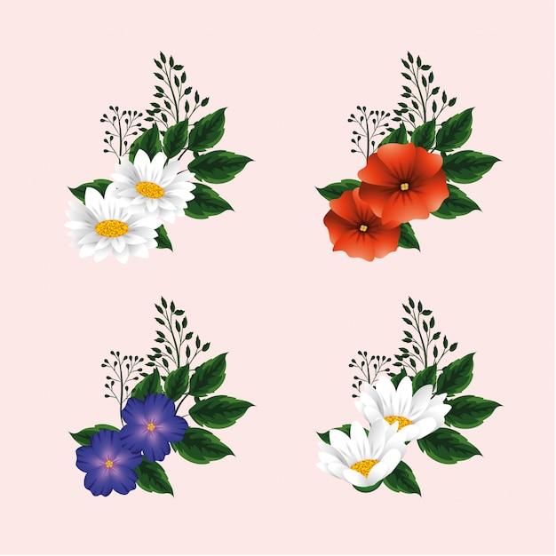 Impostare fiori esotici con foglie di piante
