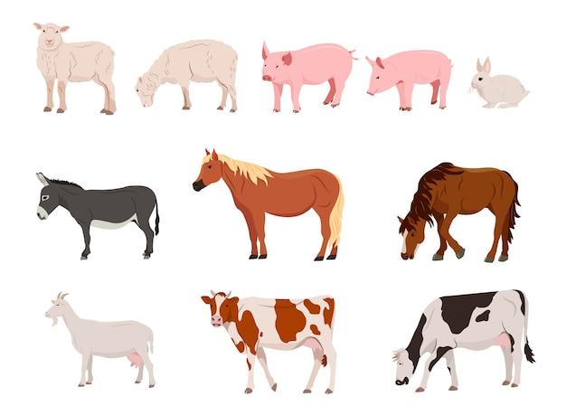Set di animali da fattoria paese pet illustrazione vettoriale in uno stile piatto