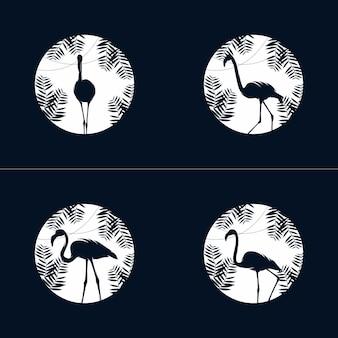 Set di modello di progettazione logo fenicottero