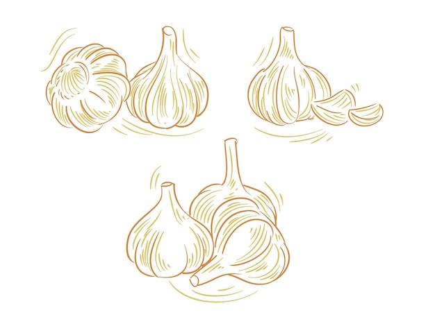 Impostare l'illustrazione piatta dell'aglio per il marchio e l'elemento del logo Vettore Premium