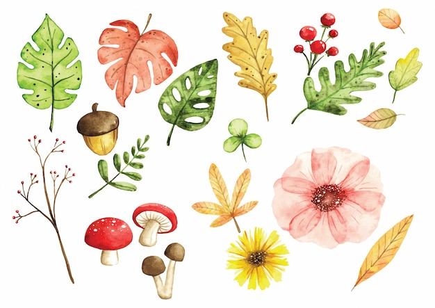 Insieme di elementi di design floreale in stile acquerello