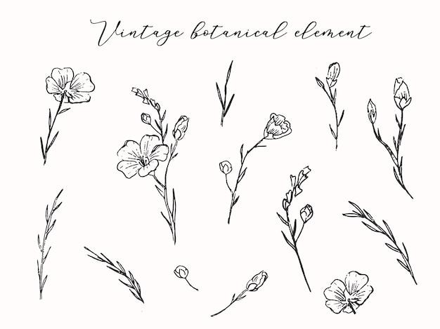 L'insieme degli elementi floreali lascia l'illustrazione di vettore dei rami dei fiori selvaggi