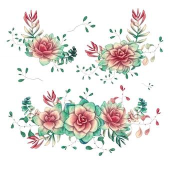 Insieme di composizioni di succulente floreali in mano disegnare stile.
