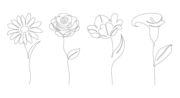 Set di fiori su sfondo bianco