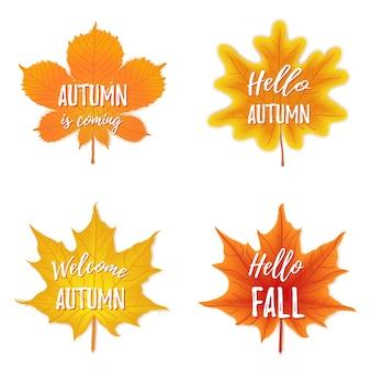 Set di quattro foglie di ottobre con iscrizione di saluto, caduta.
