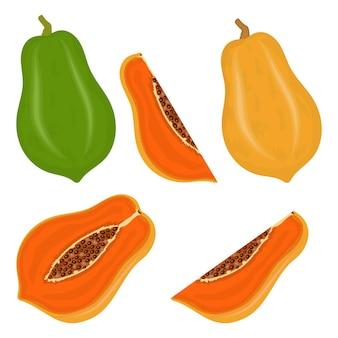 Set di frutti di papaya freschi e succosi con fette