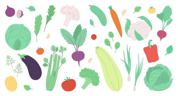 Set di verdure fresche ed erbe aromatiche isolate su bianco moderno vettore illustrazione