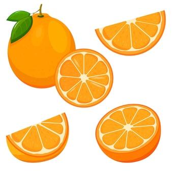 Set di frutta fresca intera, metà, fetta d'arancia tagliata isolata su sfondo bianco. mandarino. frutta biologica. stile piatto. illustrazione vettoriale per qualsiasi disegno.