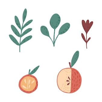Set da mele, ramoscelli e fiori su sfondo bianco. schizzo botanico scandinavo disegnato a mano in stile doodle