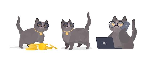 Set di gatti divertenti con gli occhiali. adesivo gatto dall'aspetto serio. ottimo per adesivi, magliette e cartoline. isolato. vettore.