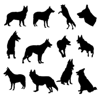 Insieme dell'illustrazione eps10 di vettore della siluetta del pastore tedesco