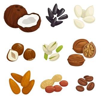 Set di grano e noccioli isolati su bianco