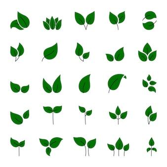 Insieme di elementi di foglie verdi. questa immagine è un'illustrazione.