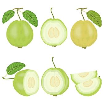 Set di frutta fresca guava con foglie e fette