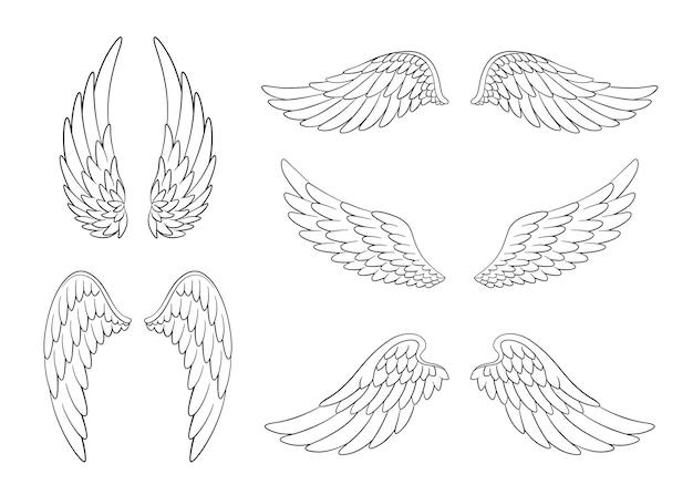 Set di ali di uccello o angelo disegnate a mano di forma diversa in posizione aperta.