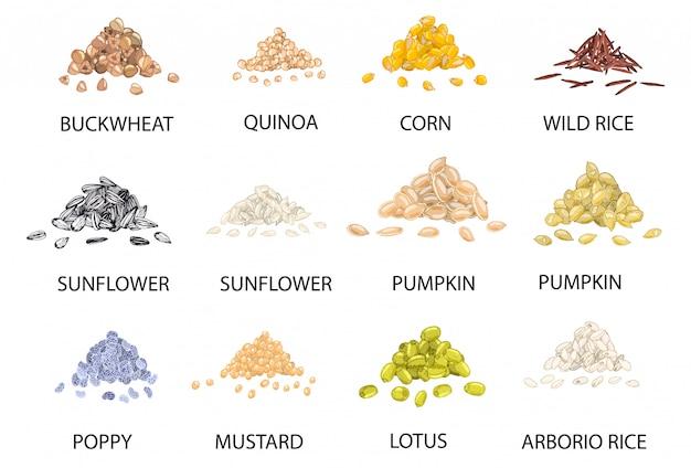 Set di mucchi colorati disegnati a mano di cereali.