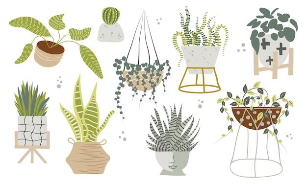 Set di piante da appartamento in vaso tropicali piatte disegnate a mano in stile scandinavo. illustrazione della decorazione domestica moderna. disegno di fiori.