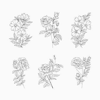 Set di elementi floreali disegnati a mano. fiori e foglie botaniche