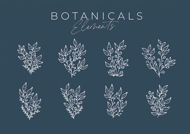 Set di fiori disegnati a mano con foglie e rami Vettore Premium