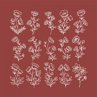Set di fiori disegnati a mano con foglie e rami