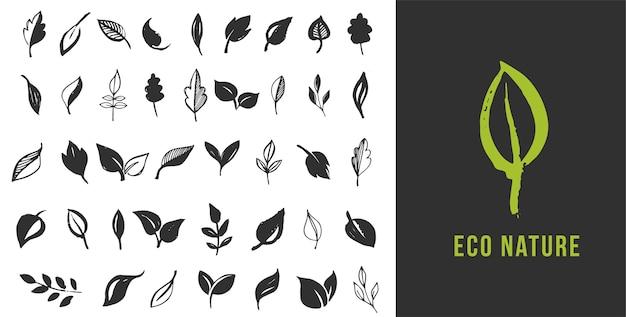 Set di foglie disegnate a mano, foglia verde, schizzi e scarabocchi di foglie e piante, raccolta di vettore di foglie verdi