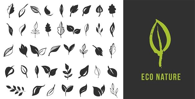 Set di foglie disegnate a mano, foglia verde, schizzi di foglie e piante, logo di foglie verdi