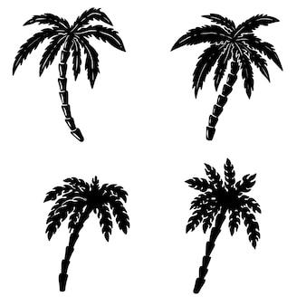 Insieme delle illustrazioni disegnate a mano della palma su fondo bianco. elementi per poster, emblema, segno, distintivo. immagine