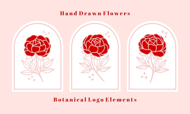 Set di elementi botanici rosa rosa fiore, peonia e foglia ramo disegnati a mano per logo femminile e marchio di bellezza