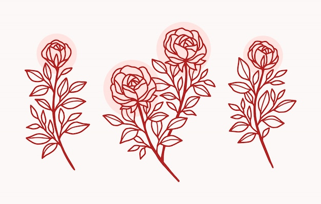 Set di logo fiore rosa disegnato a mano