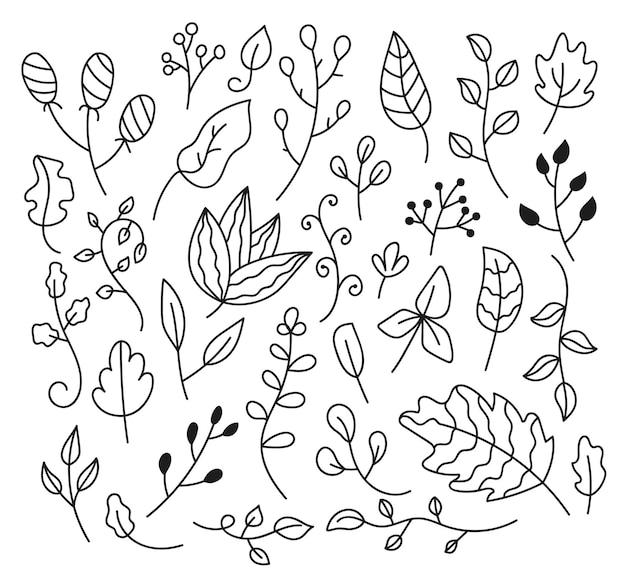 Insieme di doodle di schizzo disegnato a mano isolato su sfondo bianco foglie