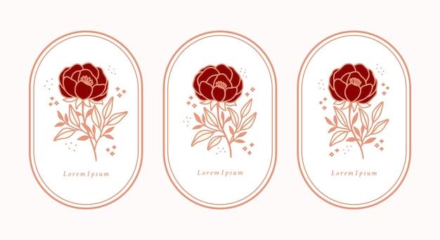 Set di elementi botanici vintage disegnati a mano rosa fiore peonia e foglia ramo per logo femminile e marchio di bellezza