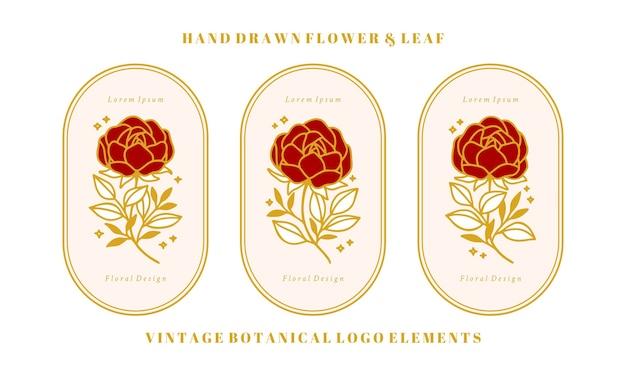 Set di elementi floreali, peonia e foglia di rosa botanica oro vintage disegnati a mano