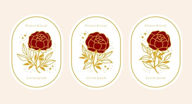 Set di fiore rosa botanico oro vintage disegnato a mano