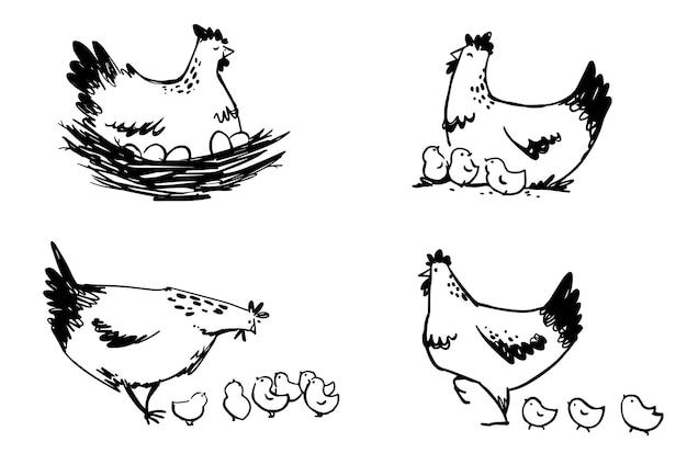 Set di galline con pulcini e gallina seduta sulle uova, arte di linea vettoriale.