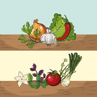 Impostare erbe e spezie piante e cibo per organo