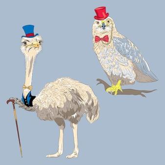 Set di uccelli hipster. uccello di struzzo con cappello a cilindro blu e papillon dorato con bastone da passeggio e poiana dalle gambe ruvide con cappello rosso, occhiali e papillon