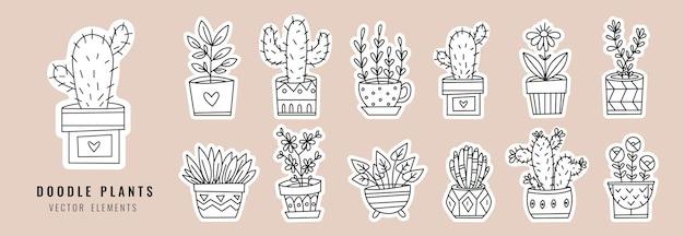 Un insieme di piante domestiche in vaso. diverse piante in stile scarabocchio. collezione di adesivi con piante da appartamento.